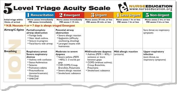 Sample 5 level triage tool